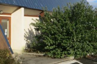 Gymnase Salle SUROIT entrée